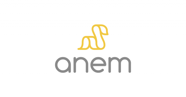 anem_blog